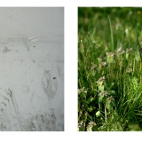 fleury-panoptiques-projo-18